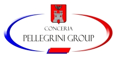 Pelllegrini Group Srl - 0571.23602